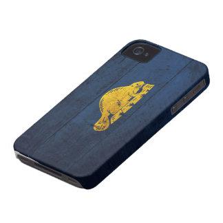 Old Wooden Oregon Flag (back) iPhone 4 Case