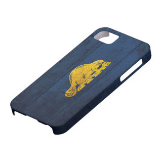 Old Wooden Oregon Flag (back) iPhone 5 Cases