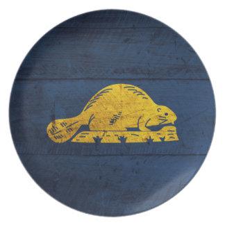 Old Wooden Oregon Flag (back) Party Plates
