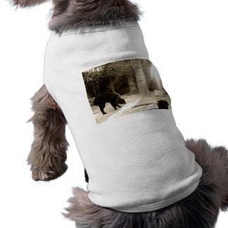 Old Wool Shirt