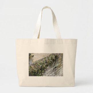 Old World Charm and Romance Canvas Bag