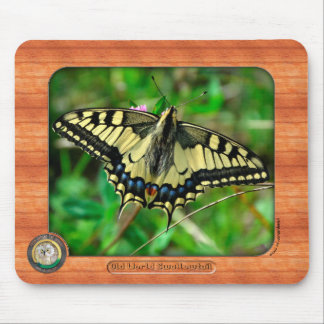 Old World Swallowtail Butterfly Mousepad