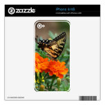 Old World Swallowtail Butterfly Papilio Machaon Skin For The iPhone 4