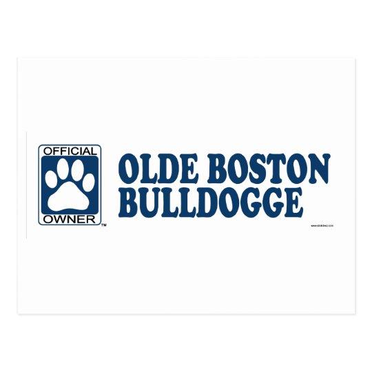 Olde Boston Bulldogge Blue Postcard
