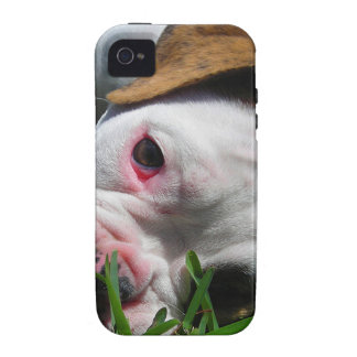 Olde English Bulldog Puppy Case For The iPhone 4
