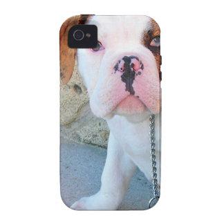 Olde English Bulldog Puppy iPhone 4/4S Cases