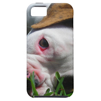 Olde English Bulldog Puppy iPhone 5 Case