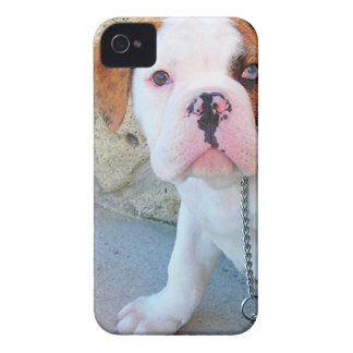 Olde English Bulldog Puppy iPhone 4 Covers