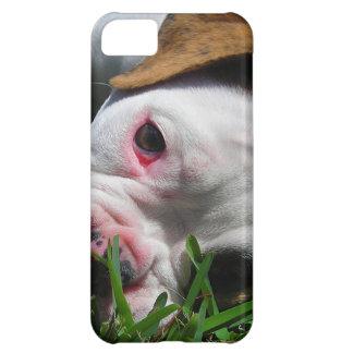 Olde English Bulldog Puppy iPhone 5C Cases