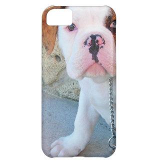 Olde English Bulldog Puppy iPhone 5C Covers