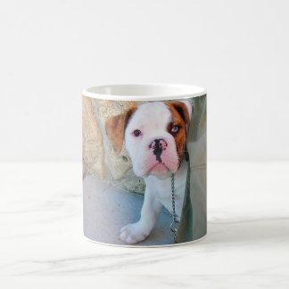 Olde English Bulldog Puppy Coffee Mug