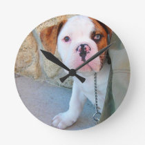 Olde English Bulldog Puppy Round Clock