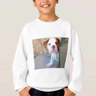 Olde English Bulldog Puppy Sweatshirt