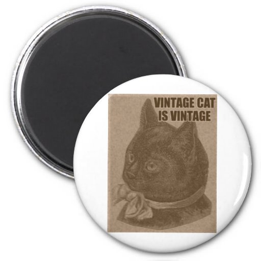Olde LOLcat 2 Inch Round Magnet
