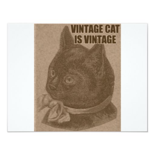 "Olde LOLcat 4.25"" X 5.5"" Invitation Card"