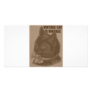 Olde LOLcat Custom Photo Card
