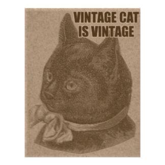 Olde LOLcat Letterhead