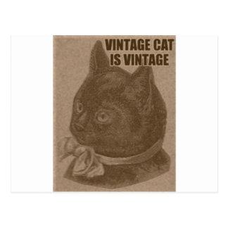 Olde LOLcat Postcard