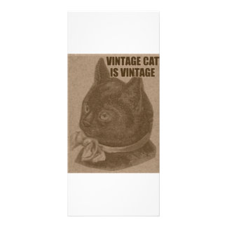 Olde LOLcat Rack Card