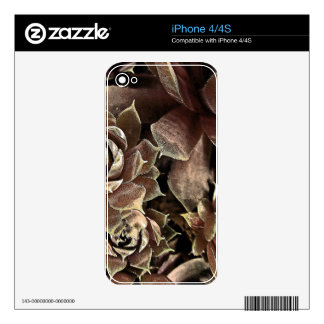 Olde Tyme Hens Decals For iPhone 4S