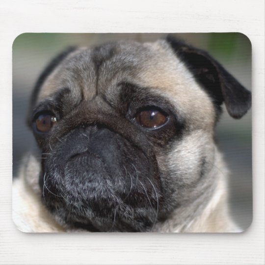 Older Pug Contemplating Life Mouse Pad