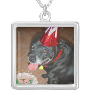 Oldie But Goodie Birthday Dog Silver Plated Necklace