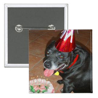 Oldie pero perro del cumpleaños de Goodie Pin Cuadrada 5 Cm