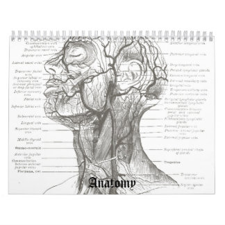 OldSchool Anatomy Calendar