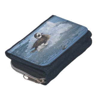 Oldsquaw Long tailed Duck on ice in the Ocean Wallet