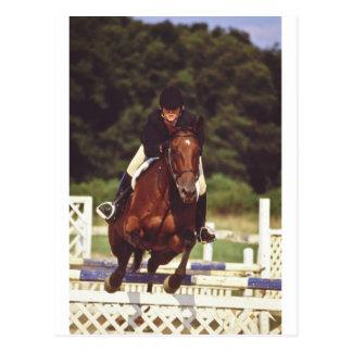 Oldwick Horse Jumping NJ Postcard
