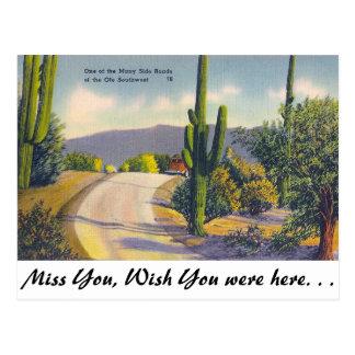 Ole Southwest Postcard