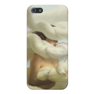 oleada de la piel iPhone 5 funda