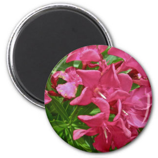Oleander Blossoms & Berries Coordinating Items Magnet