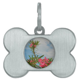 oleander bush flower floral florida pet ID tags