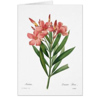 Oleander Card