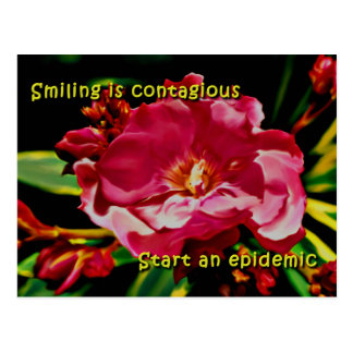 Oleander Epidemic Postcard