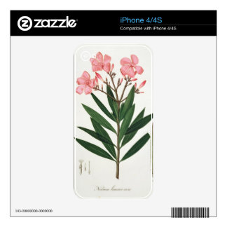 Oleander from 'Phytographie Medicale' by Joseph Ro Decals For The iPhone 4S