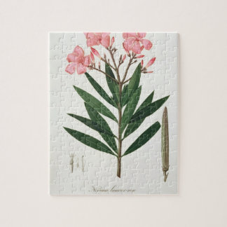 Oleander from 'Phytographie Medicale' by Joseph Ro Jigsaw Puzzle