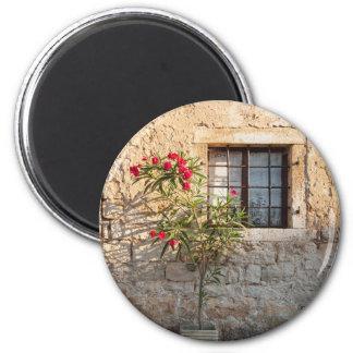 Oleander in Flower-pot, Croatia Magnet