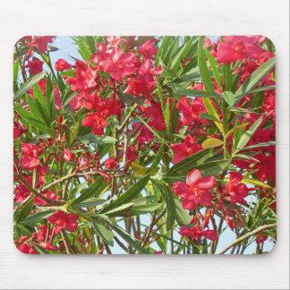 Oleander Mousepad