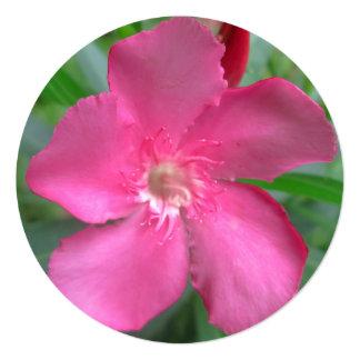 Oleander Pink Garden 5.25x5.25 Square Paper Invitation Card
