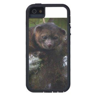 Olinguito (Bassaricyon neblina) new mammal iPhone 5 Case