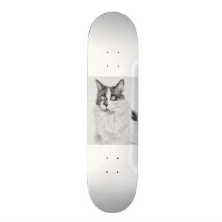Oliva the Cat Skateboard Deck