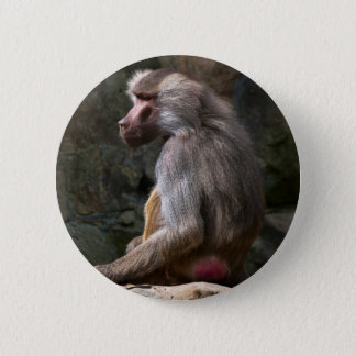 Olive Baboon Button
