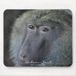Olive Baboon (female) Wildlife Portrait Mousepad