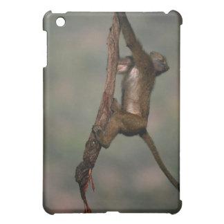 Olive baboon (Papio anubis) climbing on branch, iPad Mini Covers