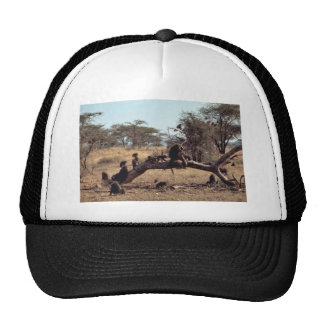 Olive Baboons Trucker Hat