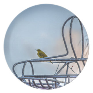 OLIVE BACKED SUNBIRD AUSTRALIA ART EFFECTS PARTY PLATES