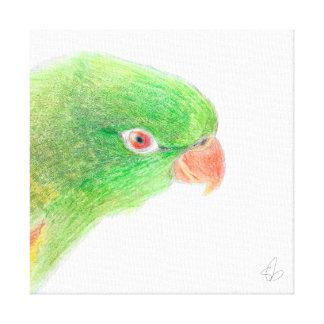 Olive Canvas Print