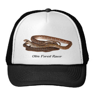Olive Forest Racer Trucker Hat
